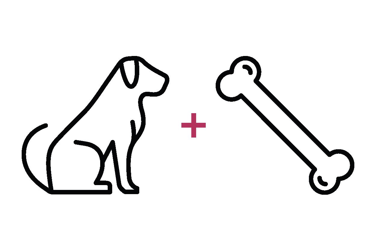 dog-01